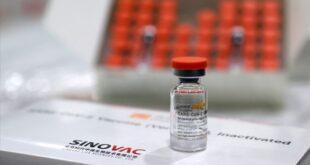 Avrupa İlaç Ajansı, Sinovac onayı için yılbaşı
